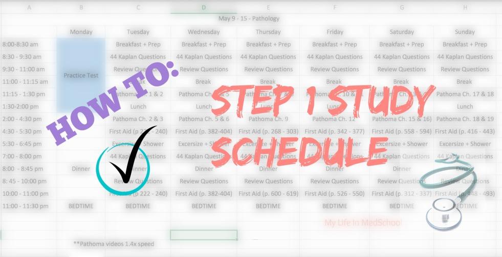 Step 1 study schedule